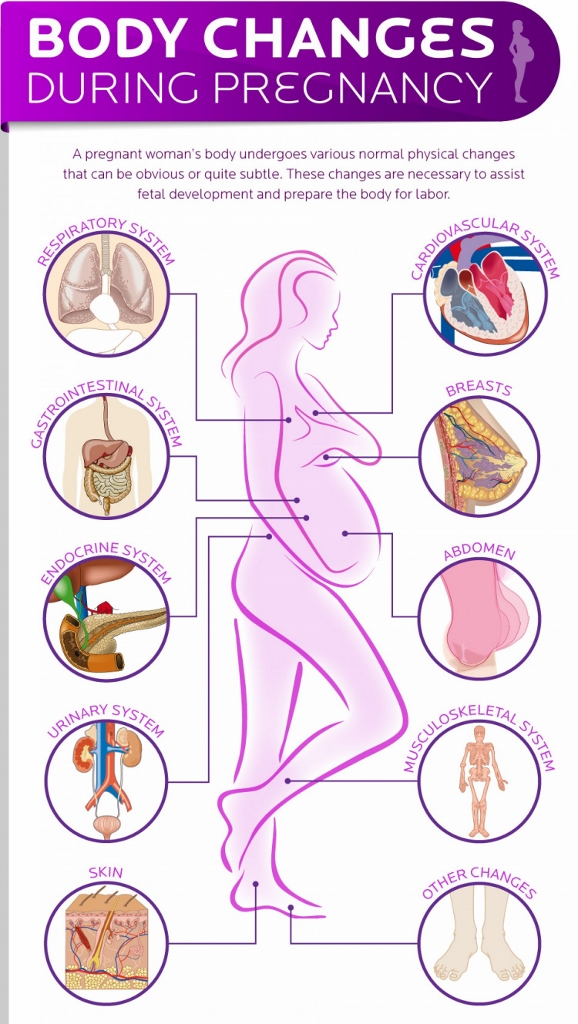 bodily changes you can expect during pregnancy - Snapshot